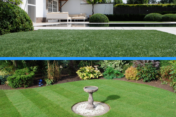 Artificial Grass or Natural Turf for the home?