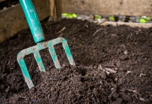 All you need to know about Topsoil
