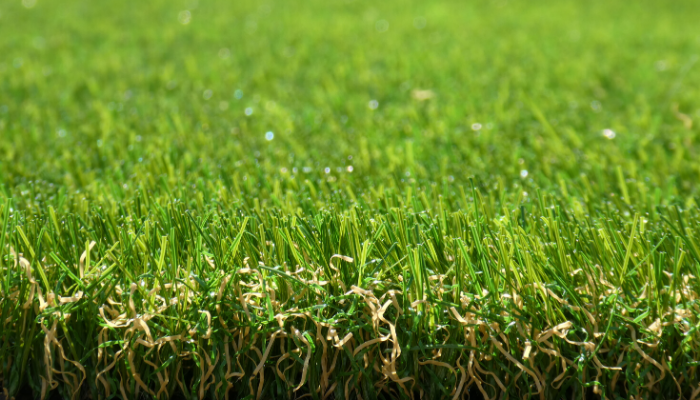 Exbury Bright Artificial Grass - Namgrass