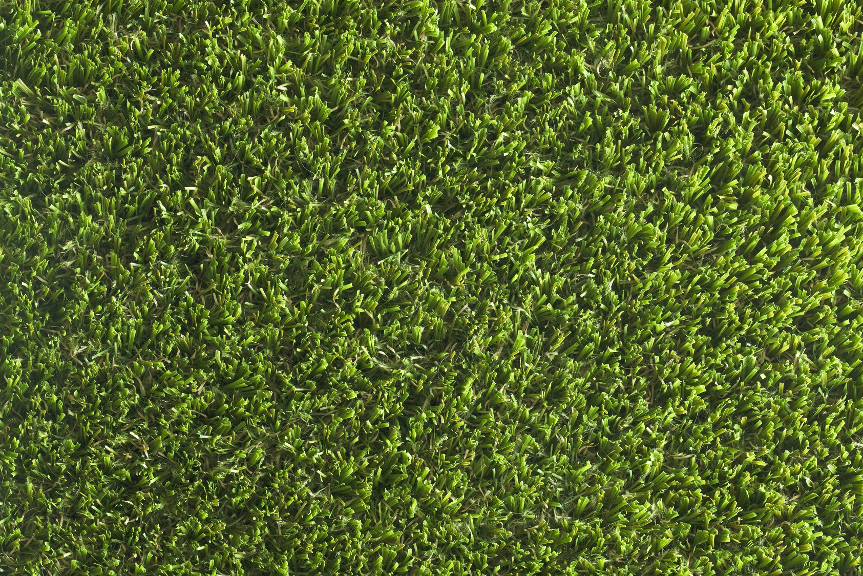 Eclipse - Namgrass - artificial grass