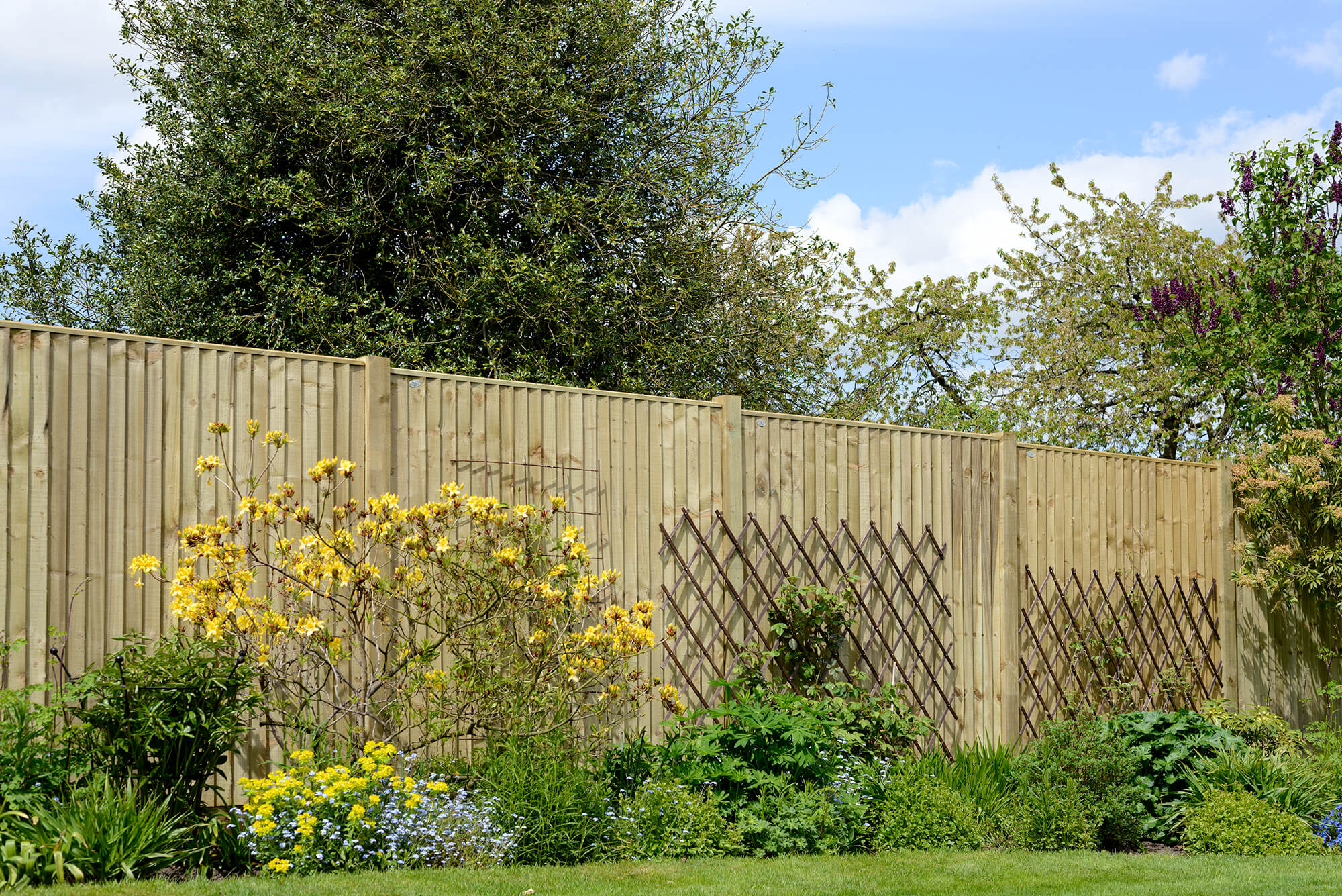 Featheredge Panels - Weston Closeboard