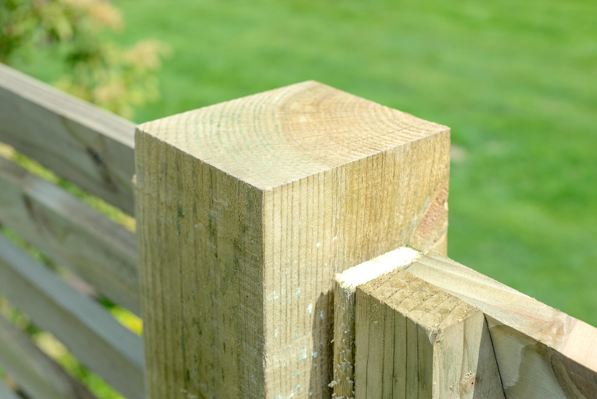 Fence Post - Timber